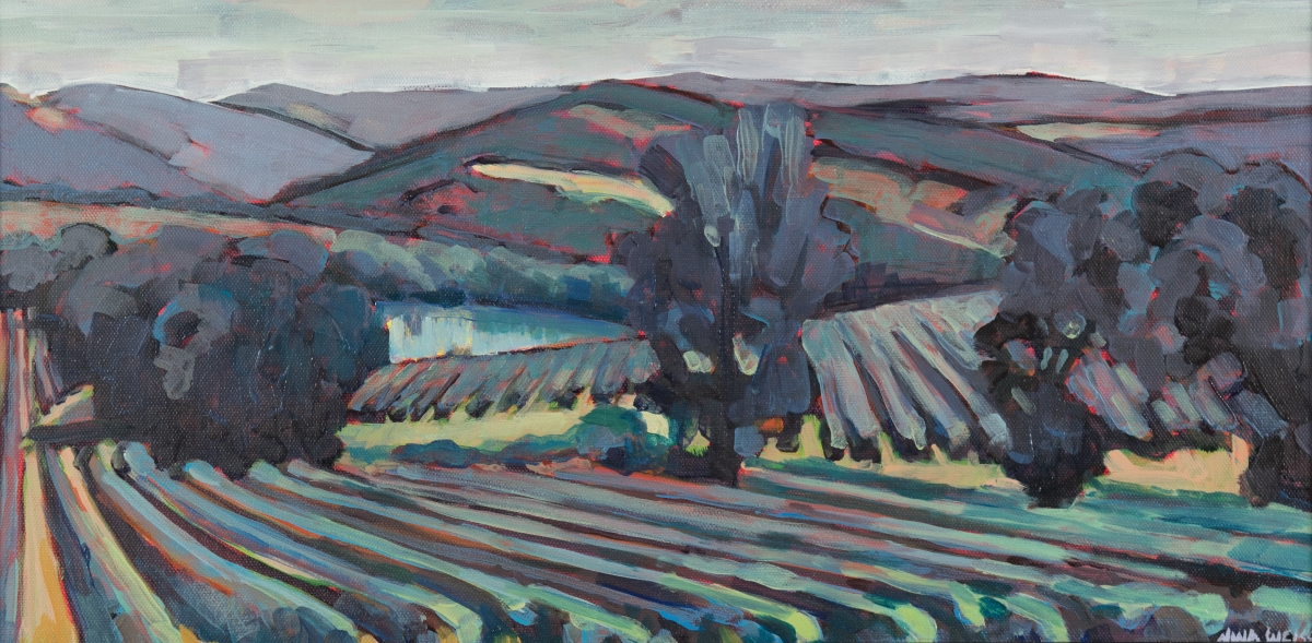Colour in the French Landscape 31 July – 9 August 2019 with Nina Weiss.
