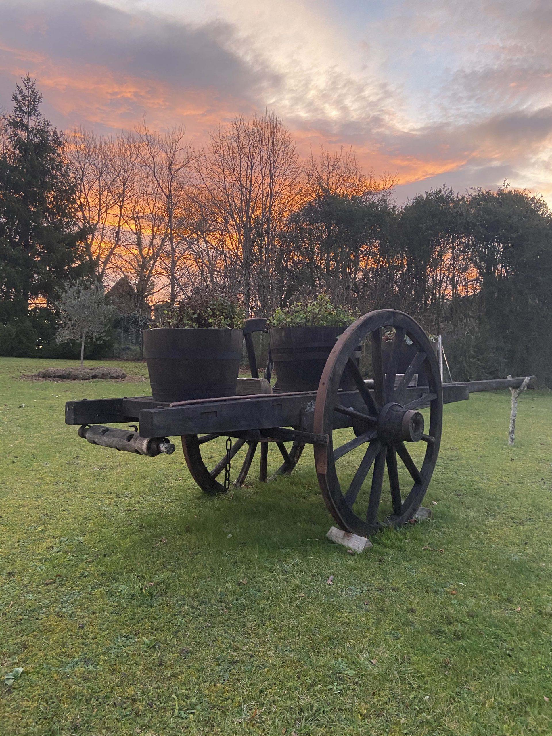 cart under sunset